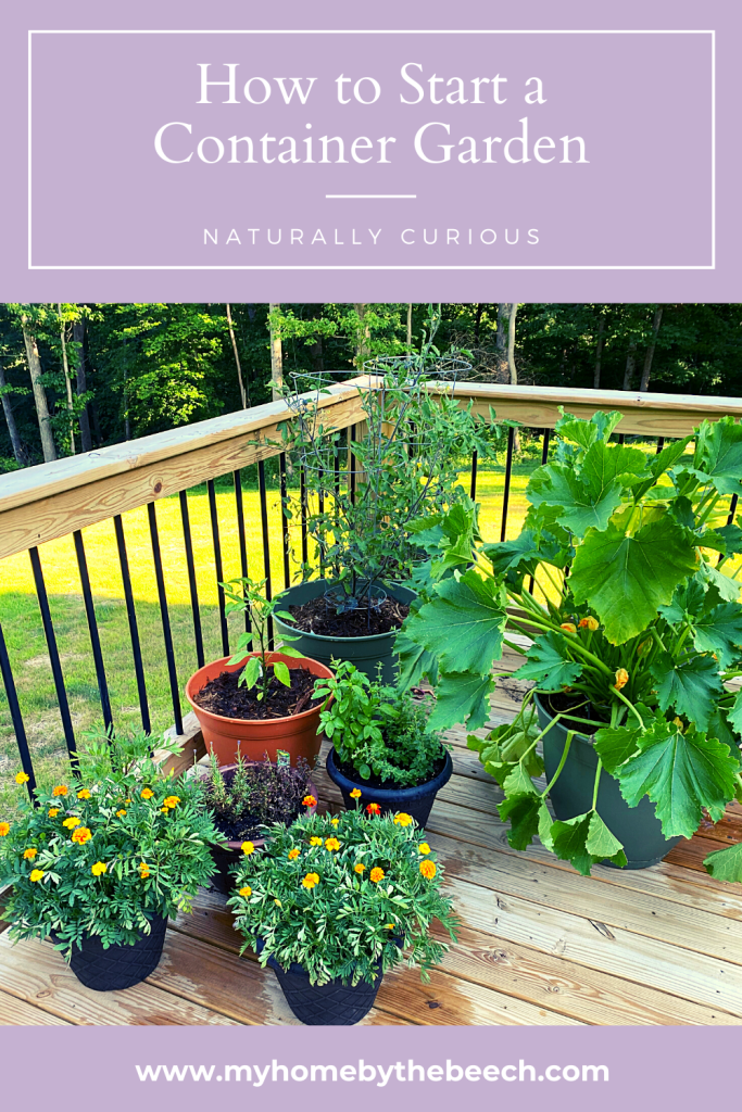 Container Gardening, How To Start Container Gardening