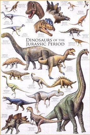 Dinosaur Poster Dinosaur Posters Prehistoric Dinosaurs Dinosaur Fossils