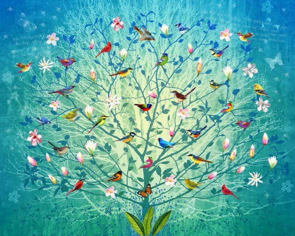 The Singing Tree by Fiona Watson