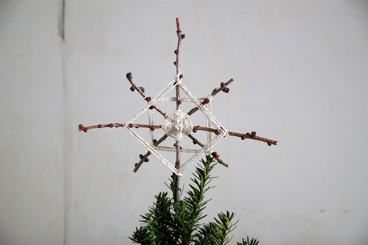 A star is born diy foraged christmas tree topper pinterest easy do you look every year for the perfect star to top the christmas tree resurrect an old camp skill and make one yourself with foraged boughs and our solutioingenieria Choice Image