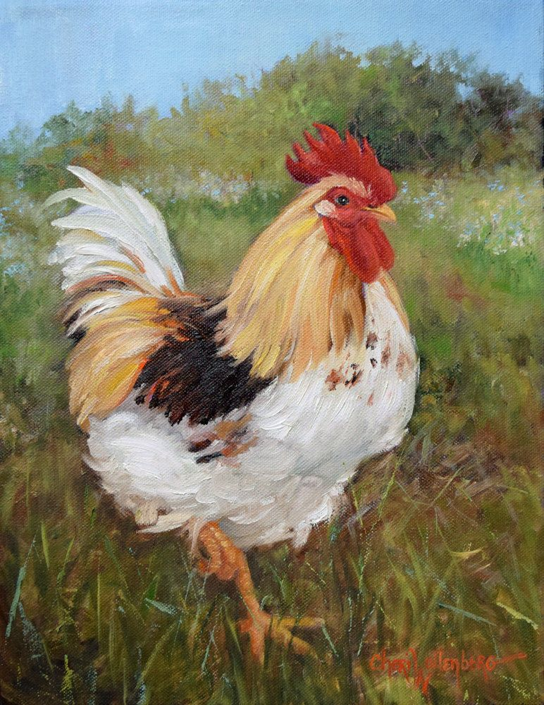 rooster painting rooster 116 original oil painting11x14
