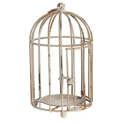 Established 98 Metal Decorative Bird Cage in 2018 Products