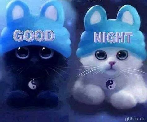 Image result for good night blingee animals