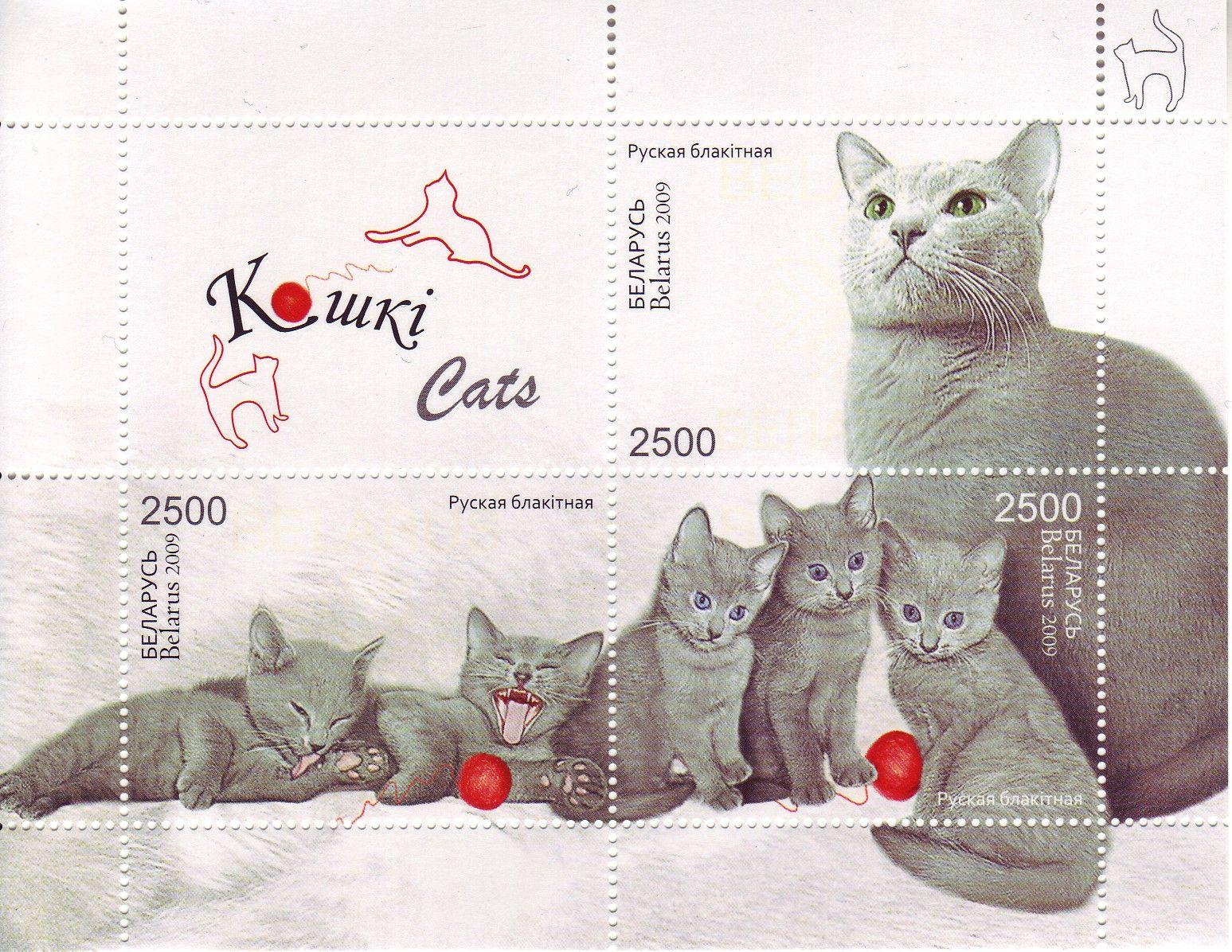 Kowki Cats Russian Blues postage stamps, Belarus