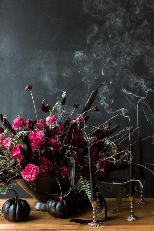 Calanthe and the Nightingale • botanic-art:   Halloween Decor  Photo by Ashley...