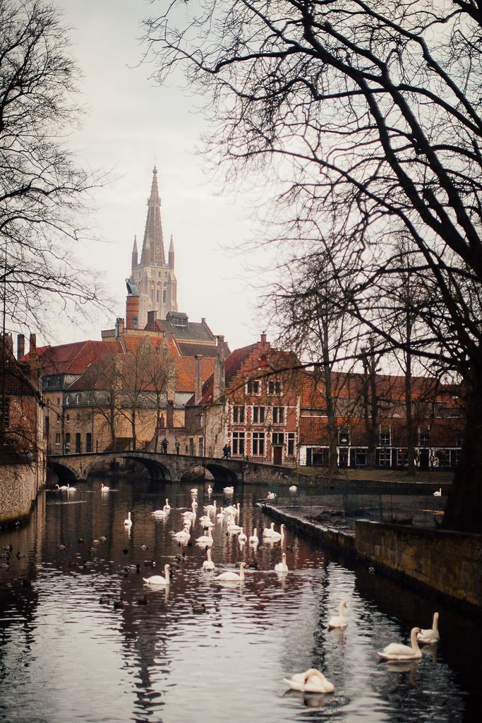 Postcards From Bruges - A Clothes Horse