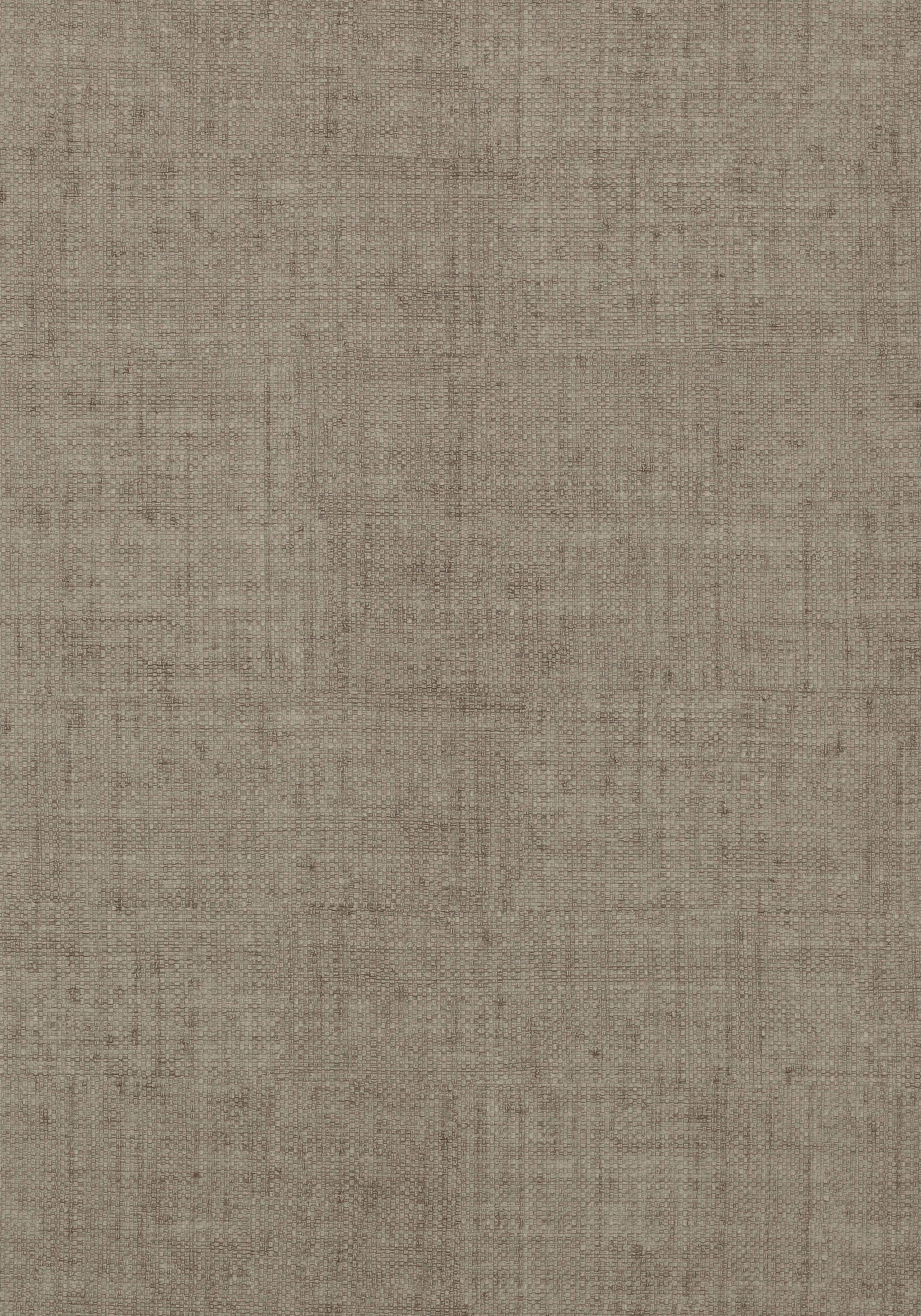 Bankun Raffia Dark Grey T14146 Collection Texture
