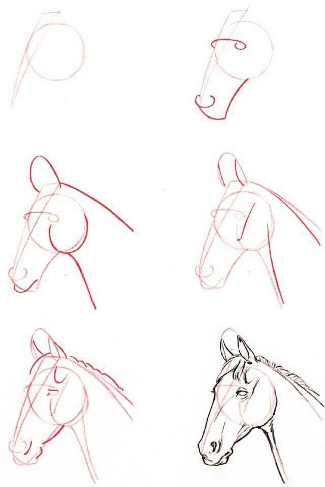 Pferde Zeichnen Malen Pferde Malen Pferde Zeichnen Und
