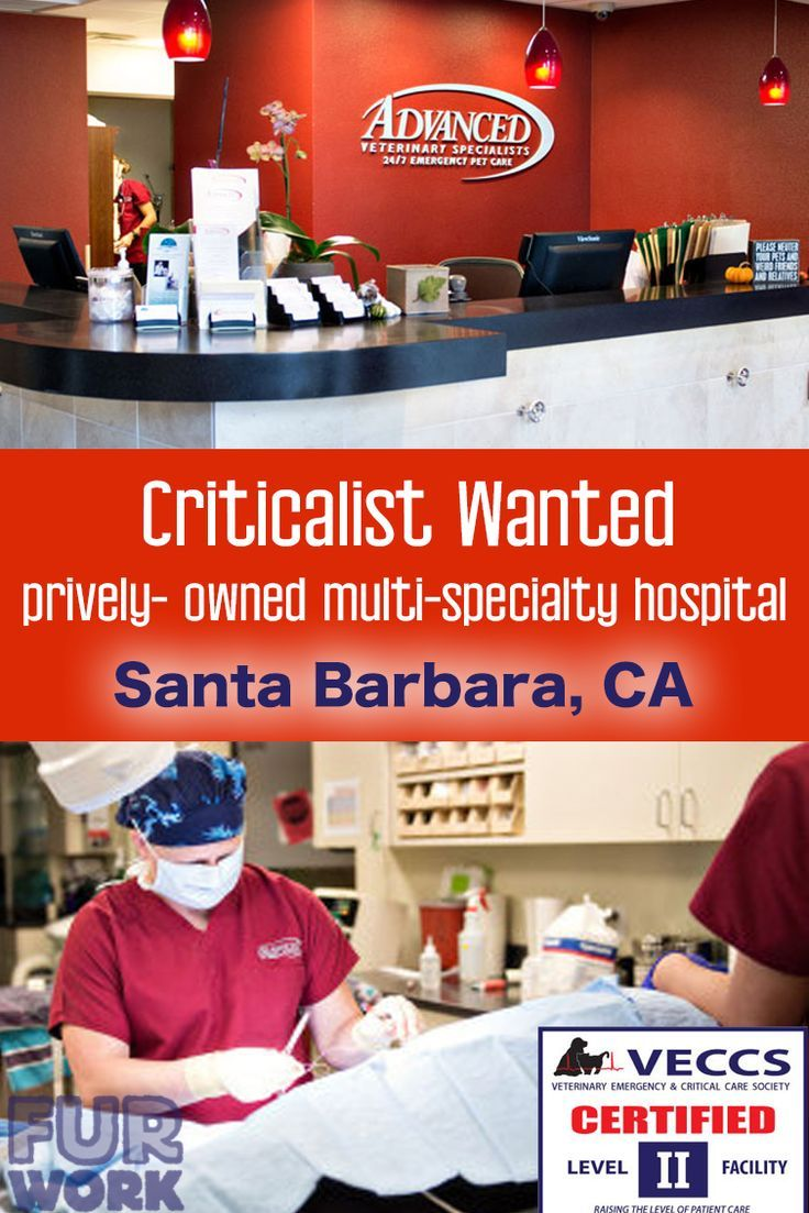 Emergency & DACVECC veterinarians, privately owned, CA