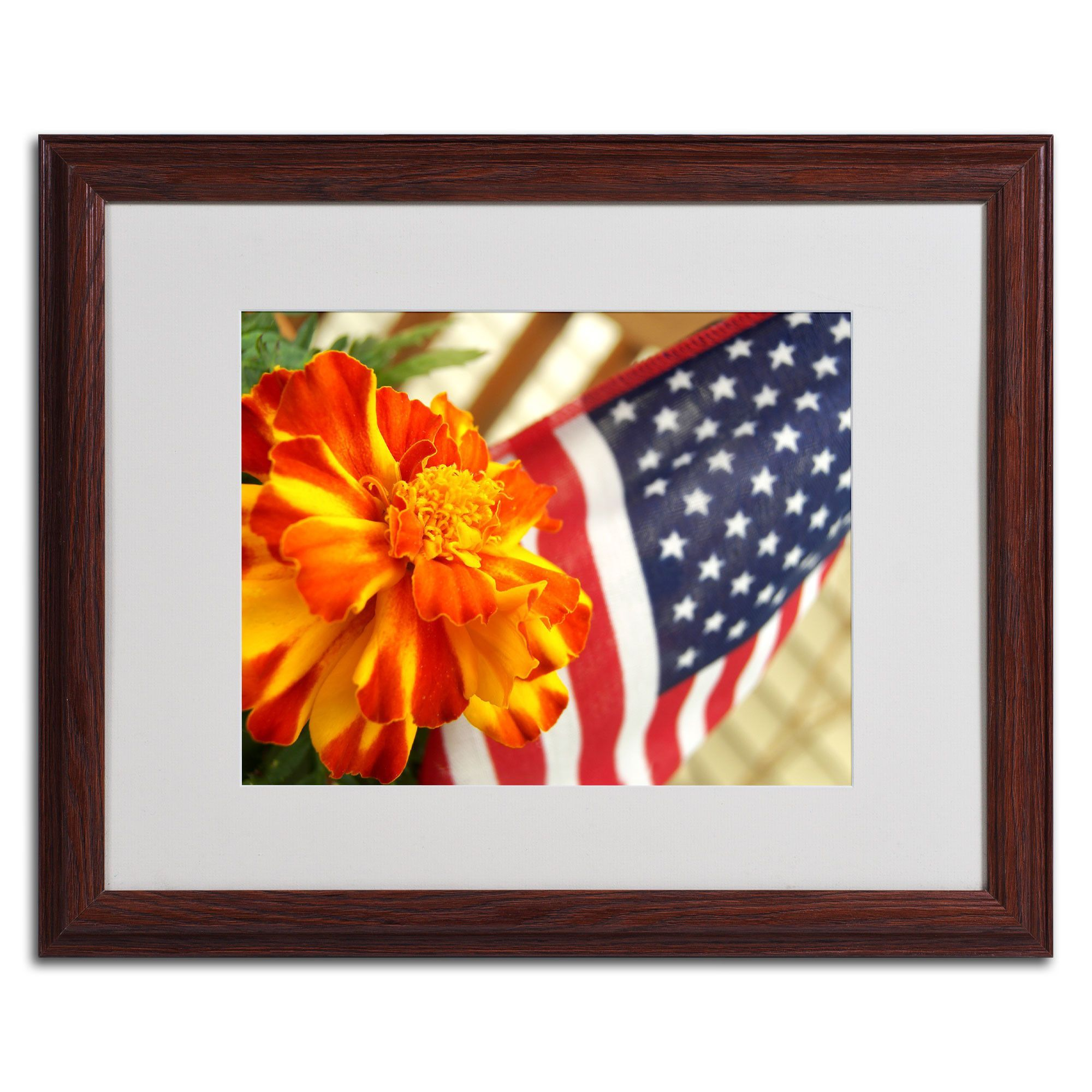 'Grace in Honor' by Monica Fleet Framed Photographic Print