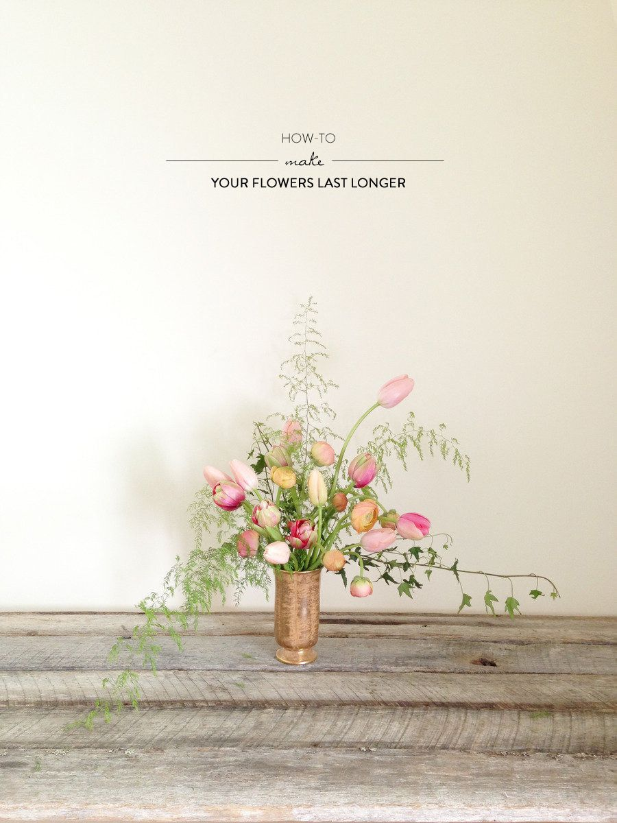 Making your flowers last longer from wild folk studio pinterest make flowers last longer with a penny and a little sugar in the water style me pretty izmirmasajfo