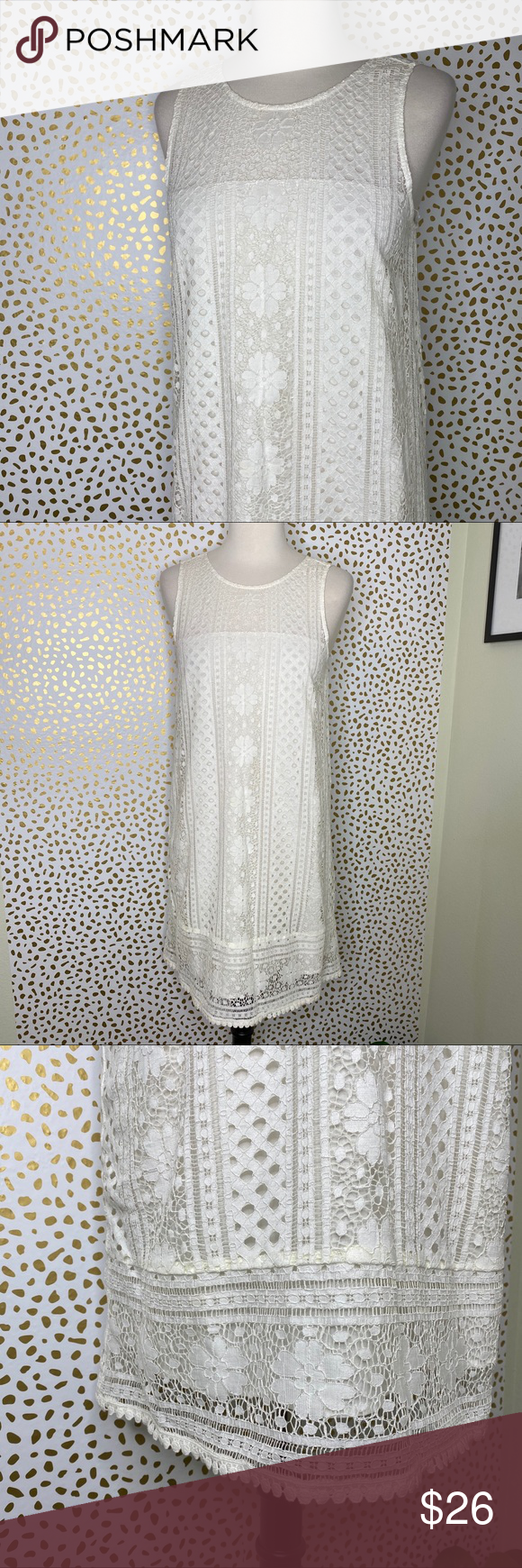 Cupcakes Cashmere White Lace Dress Lace White Dress Lace Overlay Dress White Lace [ 1740 x 580 Pixel ]