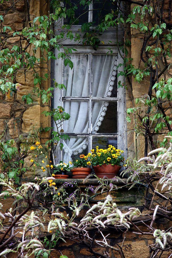 Bello contraste entre la delicadeza de la cortina y la rusticidad de la pared y de la ventana despintada ❀¸¸.•*¨*❀