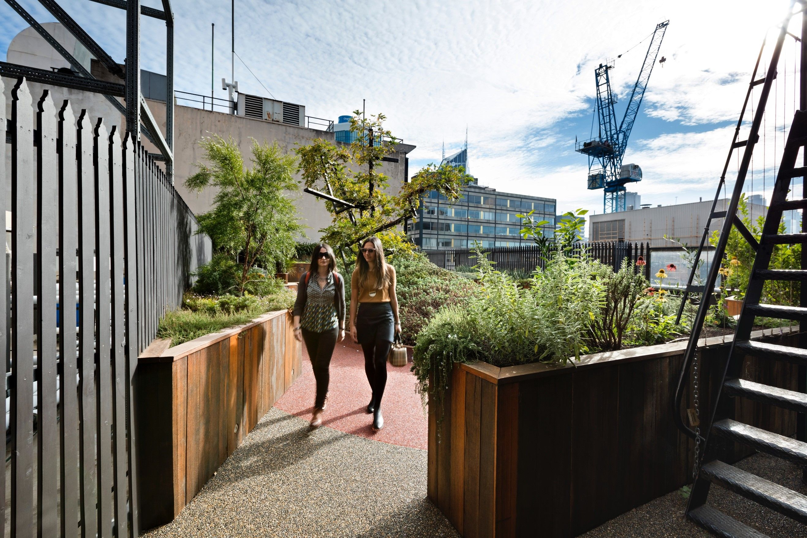 Gallery Of Growing Up Green Rooftop By Bent Architecture ...