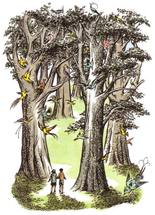 Https Www Bing Com Images Search Q Pauline Baynes Narnia Disegni