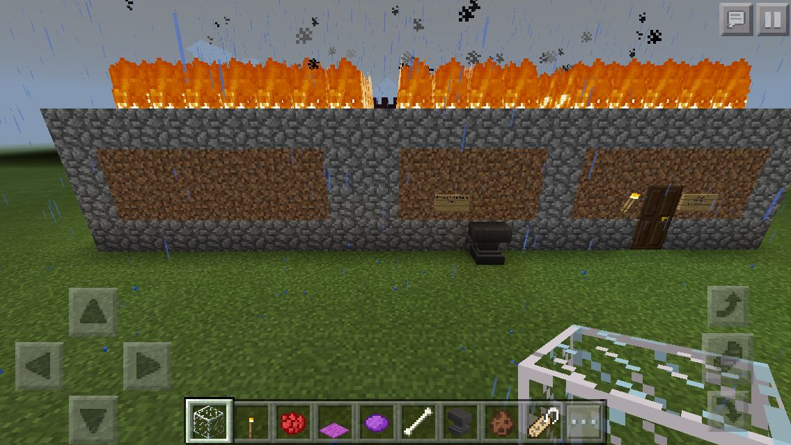 Flaming Pet Store It Worked Soccer Field Pets Flames