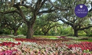 Groupon   Admission For Two Or Four At Brookgreen Gardens (Up To 55% Off