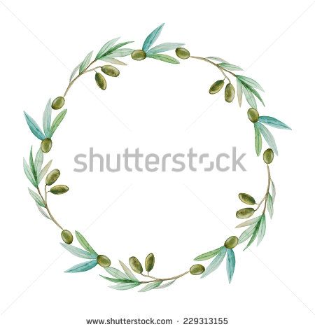 Tree Branch Watercolor Stock Photos Images Pictures Floral Wreath Watercolor Olive Branch Wreath Wreath Watercolor
