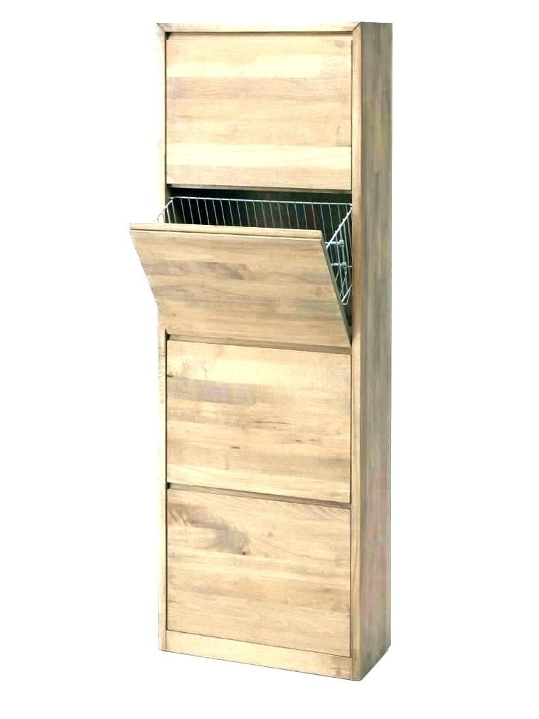 Sparkling Shoe Cabinet With Doors Arts