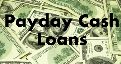 Cash loans over a year picture 2