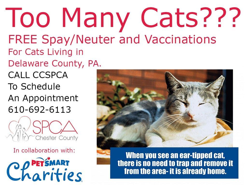 Pin On Animal Rescue Welfare Info