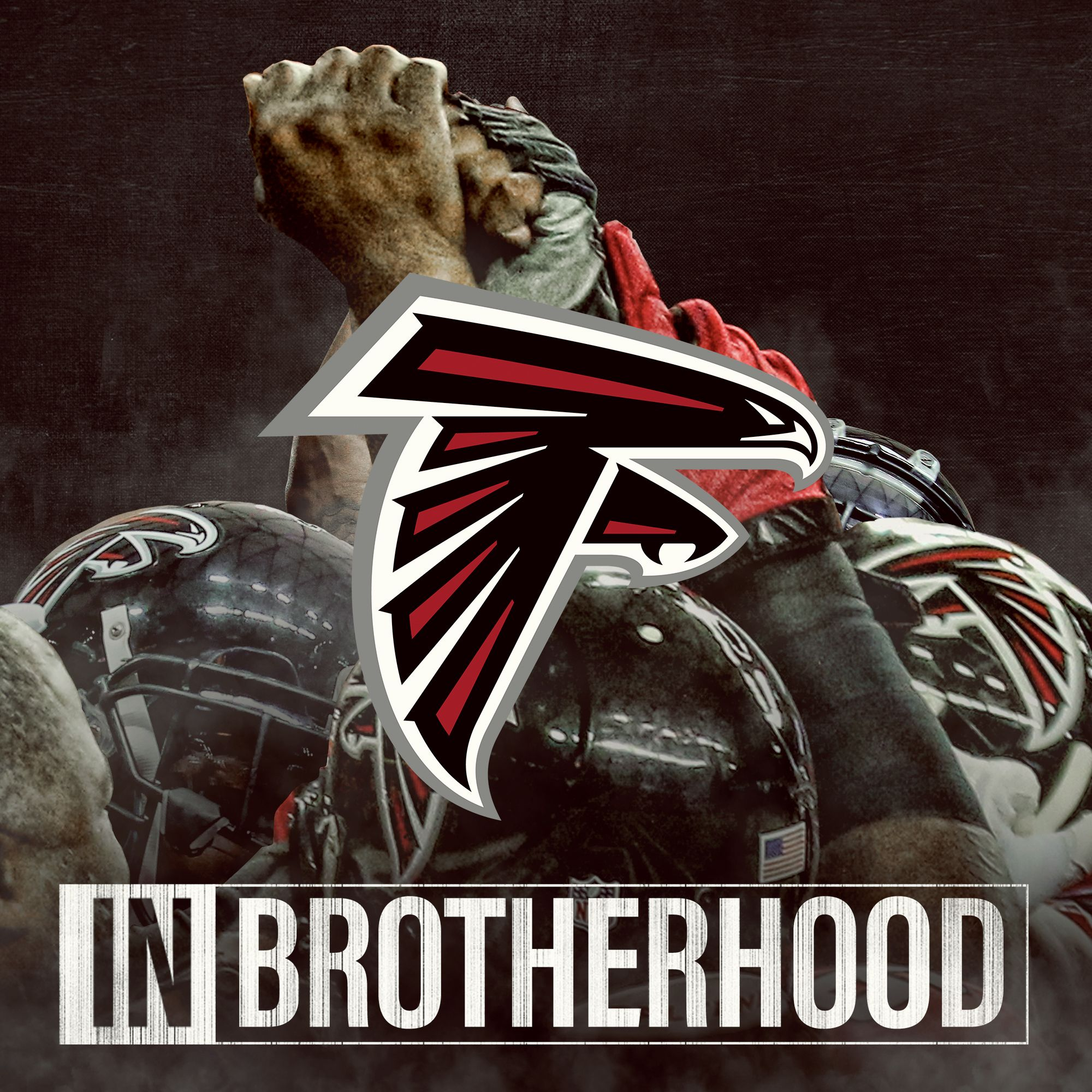 I M All In With My Atlanta Falcons All The Way To The Sb Believe In The Brotherhood Atlanta Falcons Football Atlanta Falcons Art Atlanta Falcons