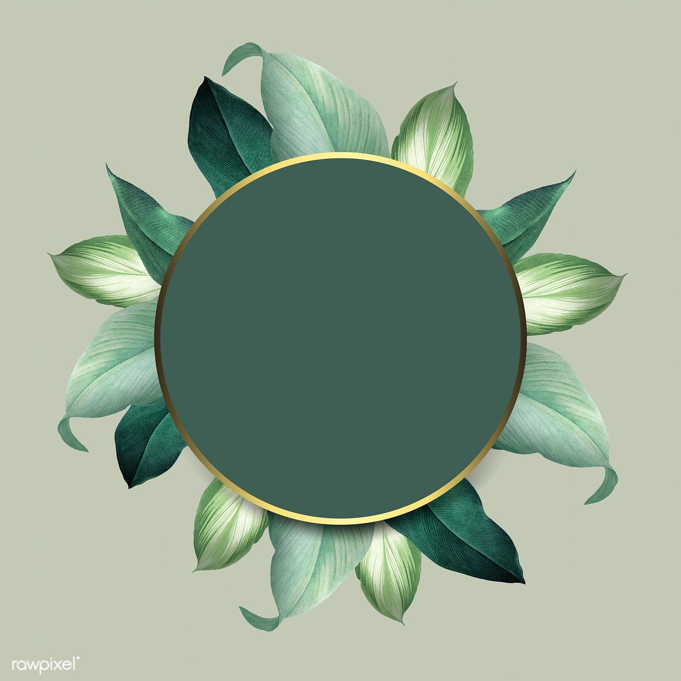 Download Premium Vector Of Round Foliage Frame On Green Background Vector Flower Background Wallpaper Green Backgrounds Background Vintage