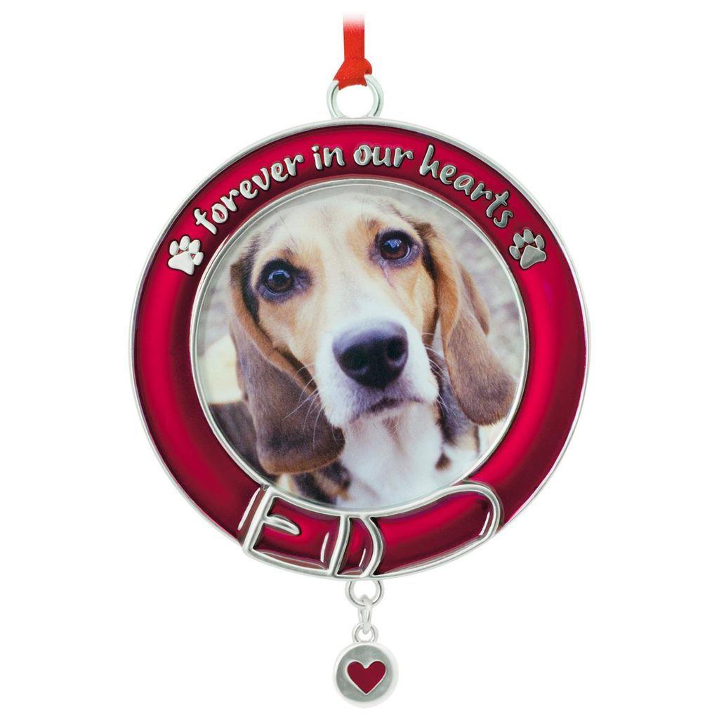 Pet Memorial Picture Frame Hallmark Ornament Pet