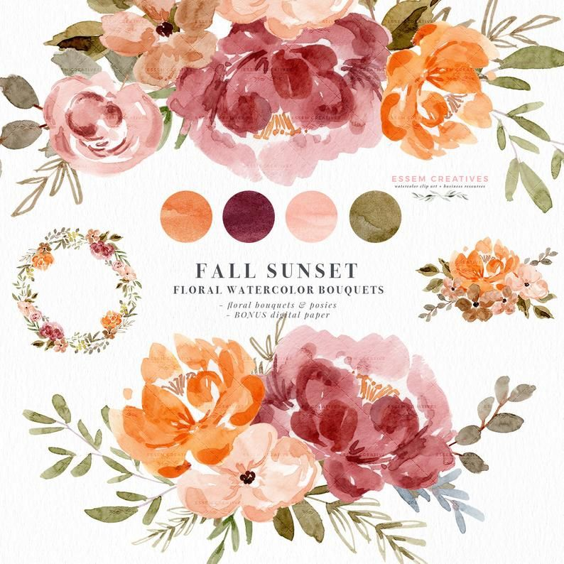 Fall Floral Watercolor Clipart Thanksgiving Clipart Fall Clipart