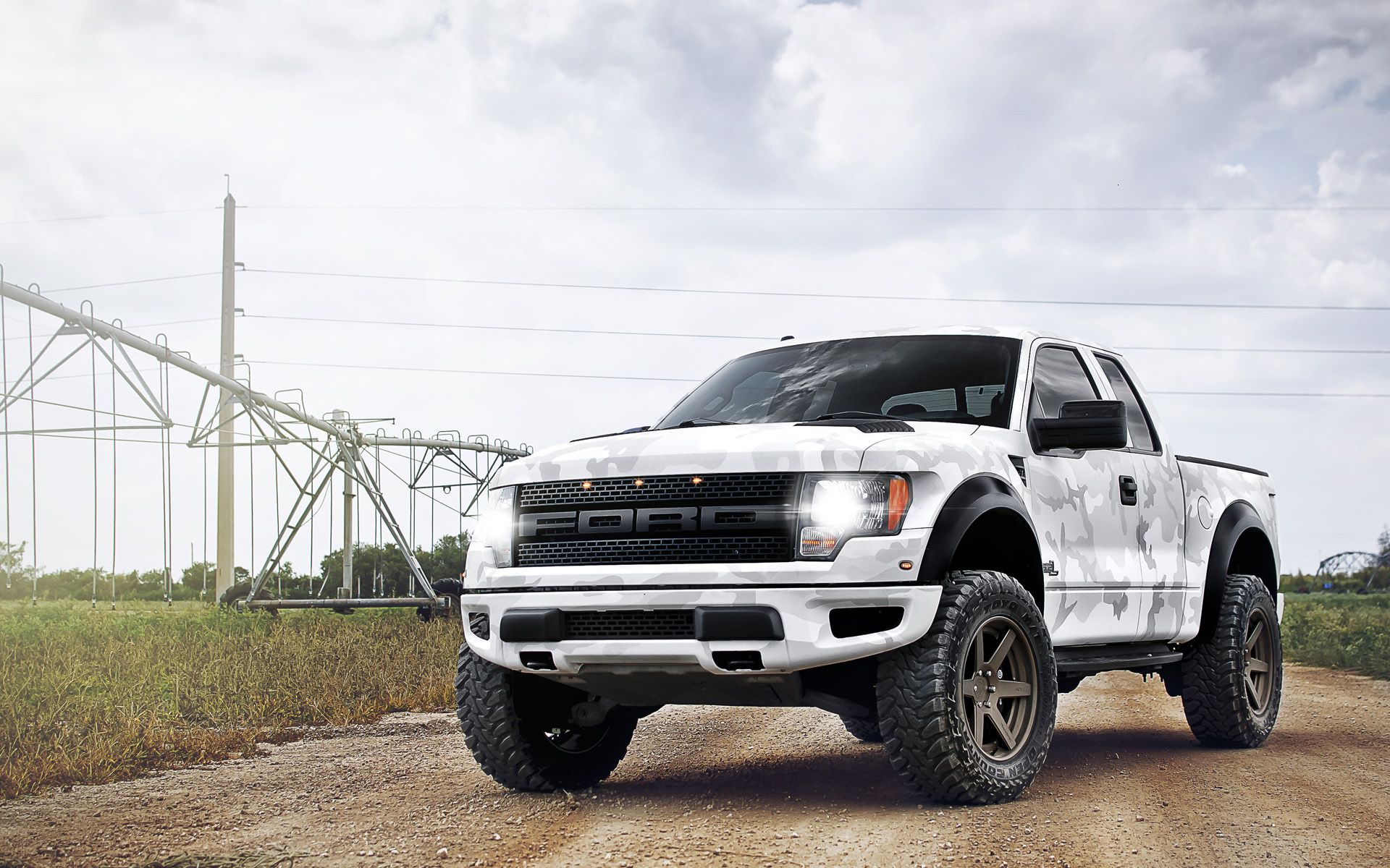 Ford Raptor Lifted Pink Camo Ford Raptor Subaru Cars Ford