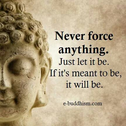 Don't force anything to happen in your life. If it is meant, it will take place, but must happen on its own!