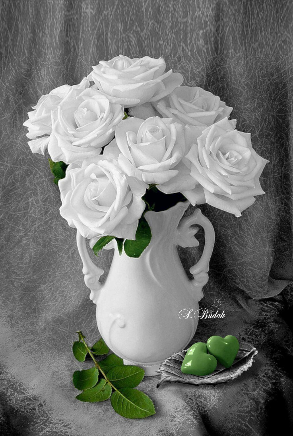 Photographer Sabri Budak Green Color Splash Photography Color Splash Art Color Splash Photography Beautiful Roses