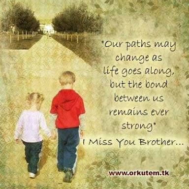 image result for quotes from sisters to brothers quotes brother