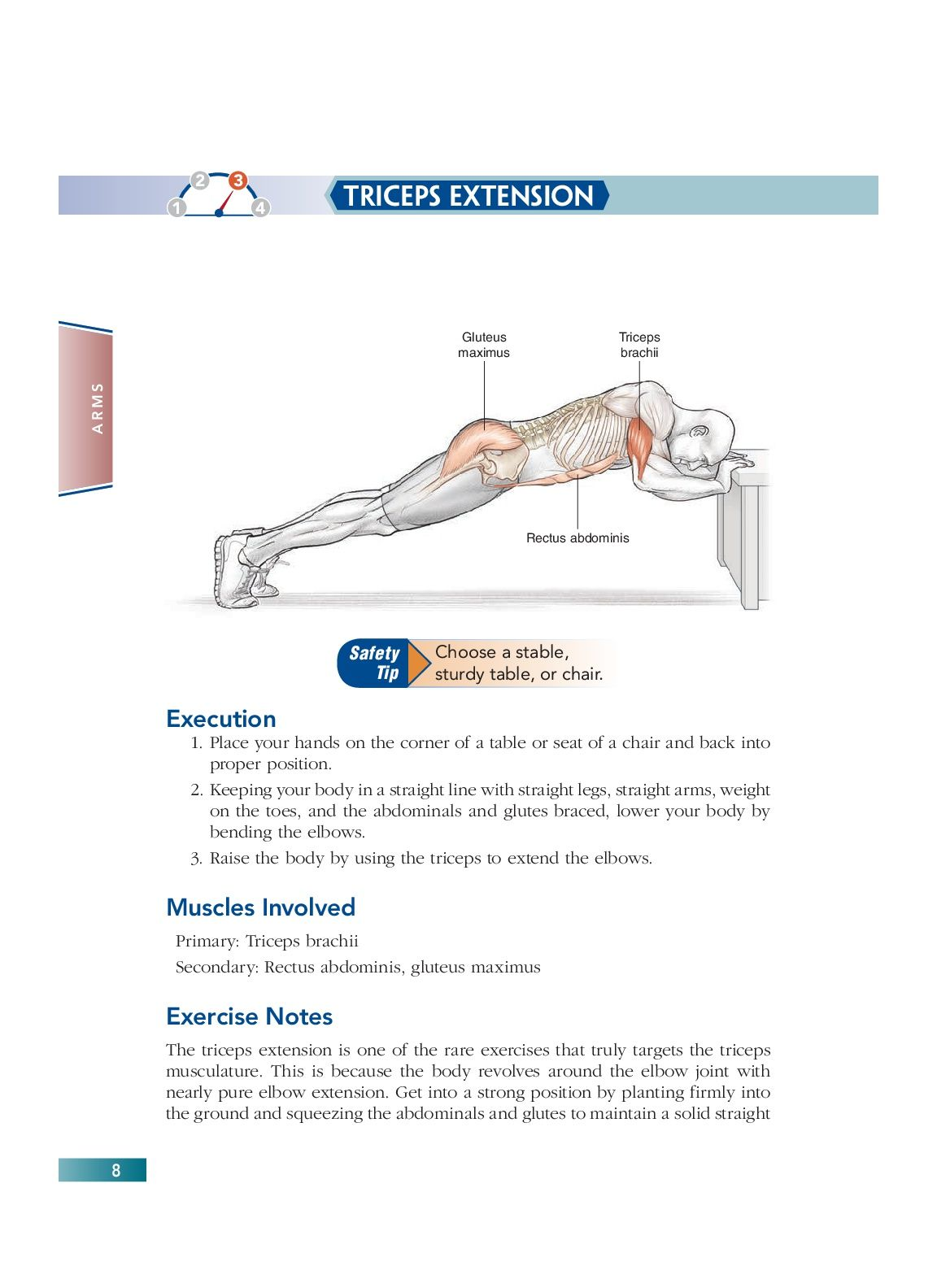Chapter 2 Arms (8) | Bodyweight Strength Training Anatomy | Pinterest