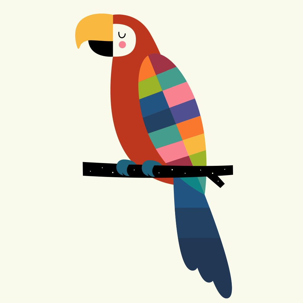 Rainbow Parrot Canvas Print By Andywestface In 2019 Kids Drawing