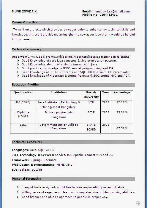 Current Resumes Sample Template Example Of Excellent Curriculum
