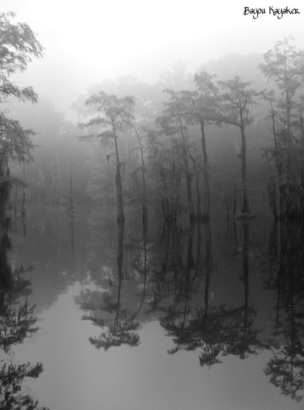 Bw foggy bayou desiard morning in monroe louisiana with
