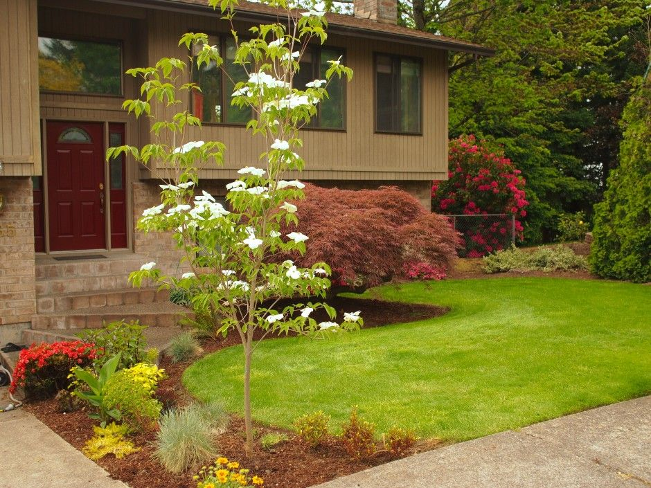 Warming Up A Cold Exterior Driveway Landscaping Front 400 x 300
