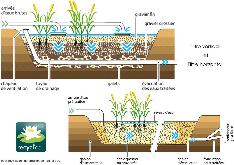 La phyto puration - Fabriquer un bassin naturel reims ...