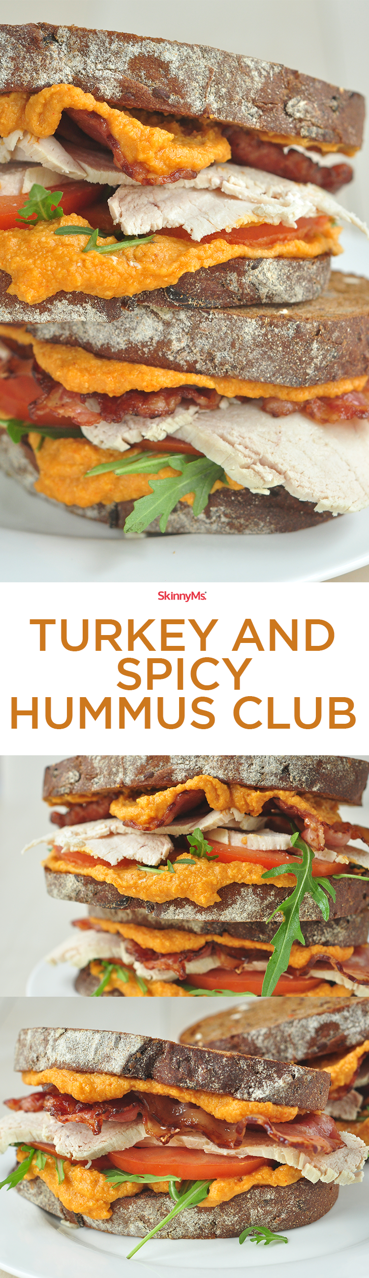 Turkey and Spicy Hummus Club