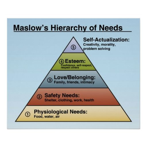 Maslow Hierarchy of Needs Poster / classroom posters / social studies / psychology / classroom decor / education
