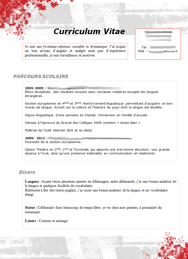 Cv Type Mcdo Modele Lettre De Motivation Lettre De Motivation Exemple Cv