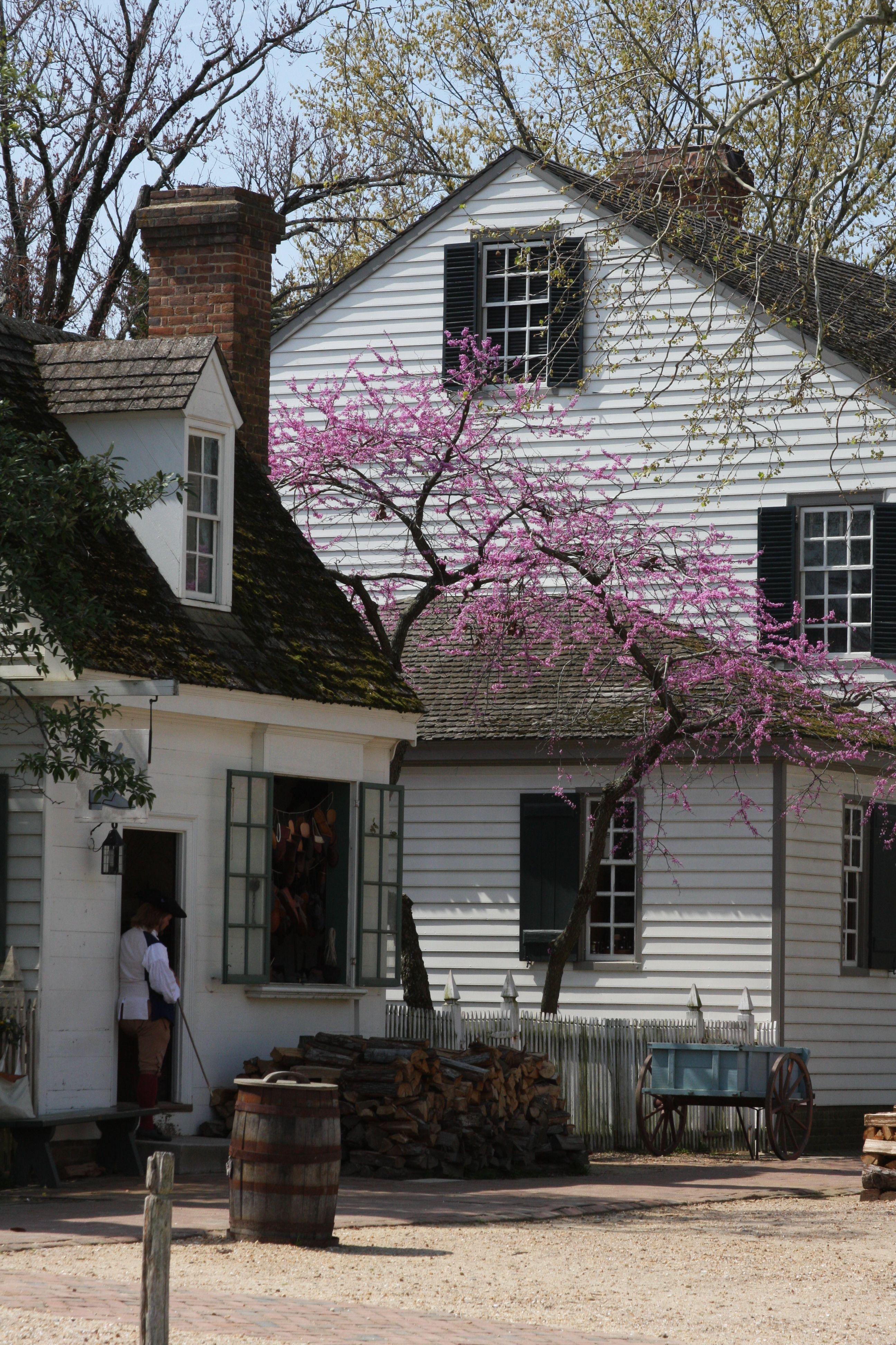 Alexander Purdie house -- Colonial Williamsburg 10-14-2011