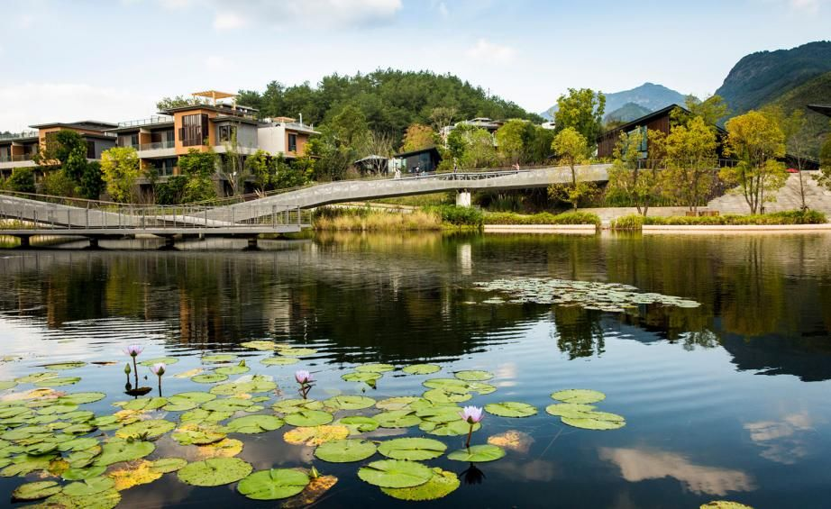 Watershed Moment A Landscaping Project In Fuzhou Responds To The Site S Topography Landscape And Urbanism Landscape Landscape Projects