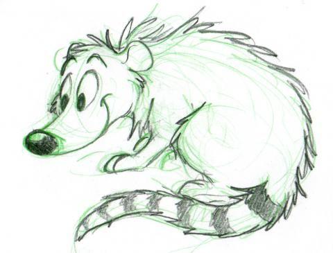 cartoon coati drawing