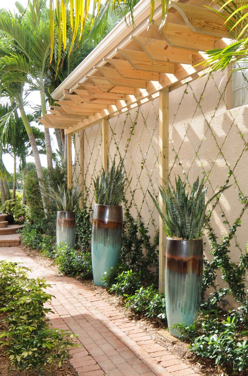 Wall Trellises And Baskets From Gardening Landscape