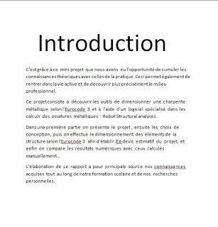 Exemple D Introduction Rapport De Stage Exemple D