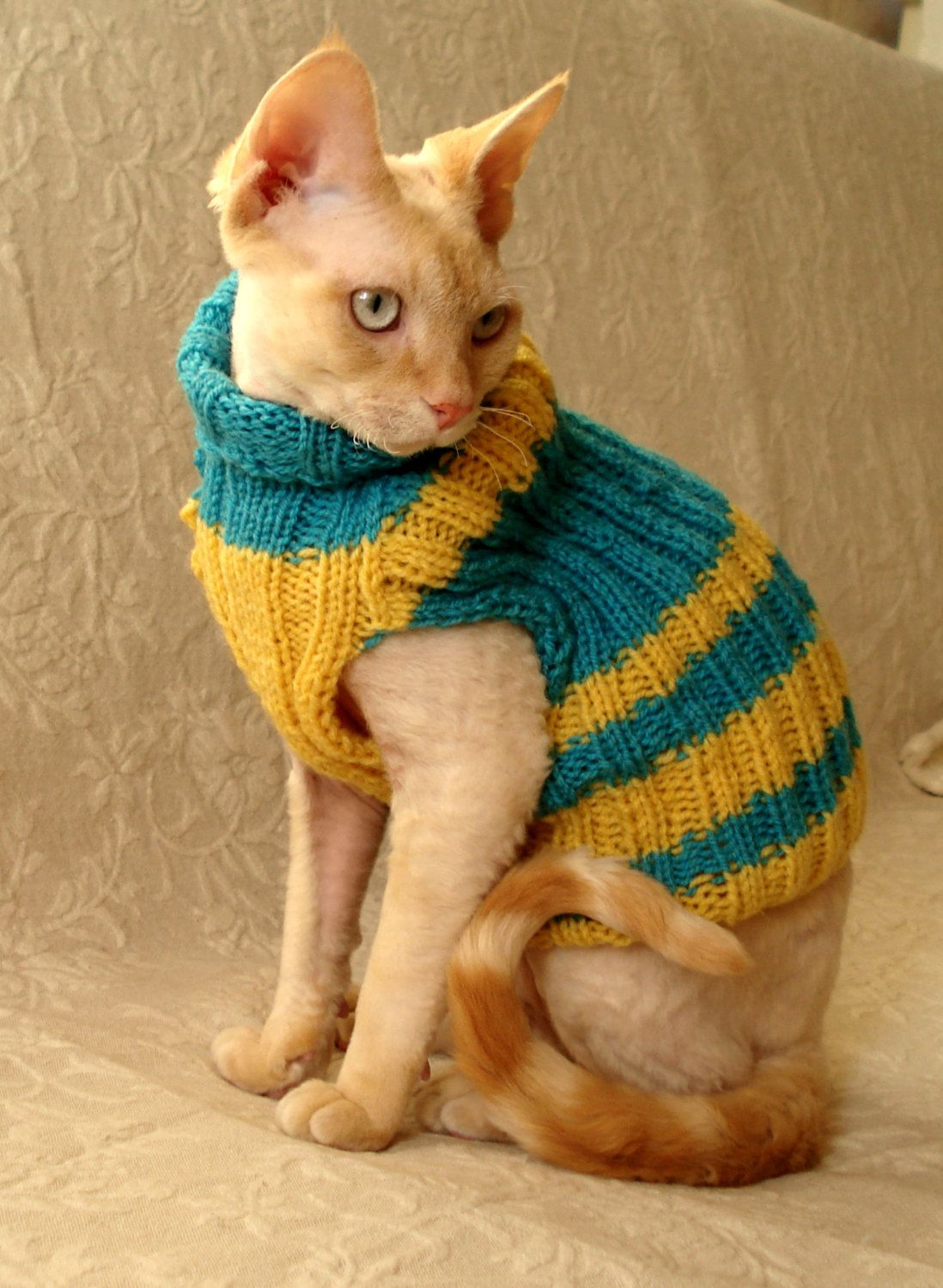 Hand knitted Cat or small Dog coat sweater jumper by RamonaStore ...