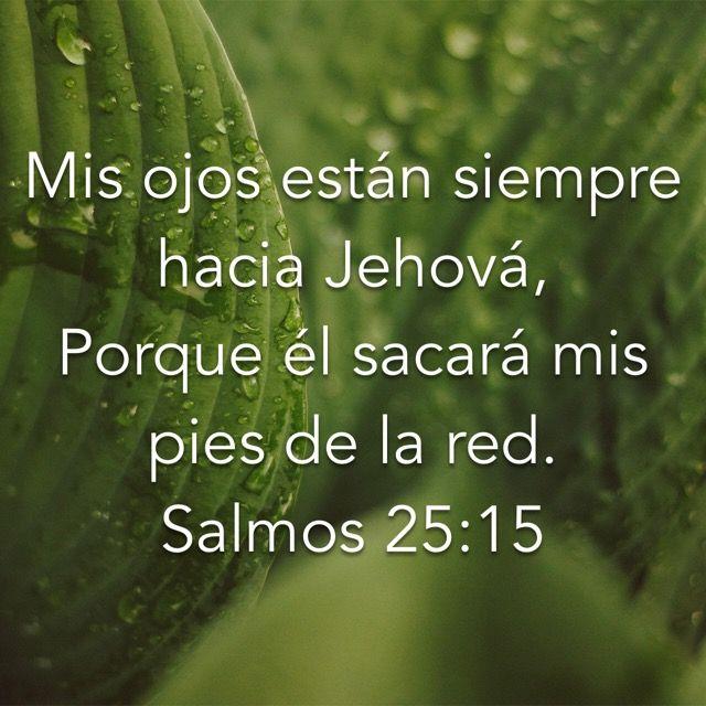 DIRECCIÓN, PERDÓN, PROTECCIÓN.  Nuestro mejor refugio, nuestro mejor recurso, nuestro mejor amigo, nuestro mejor guía, nuestro mejor Padre... por donde usted lo quiera ver, Dios es nuestro mejor y único Ser al cual podemos y debemos correr en tiempos de dificultad.     ¡ALABADO SEA NUESTRO REDENTOR QUE NOS REDIME DE TODAS NUESTRAS ANGUSTIAS! (Salmos 25:22).     Lea Salmos 25:1-22  #Dios #Refugio #Amparo #Perdonador #Protector #Guía #Padre #Redentor #Salvador #RocaFuerte #MinisterioUMCD