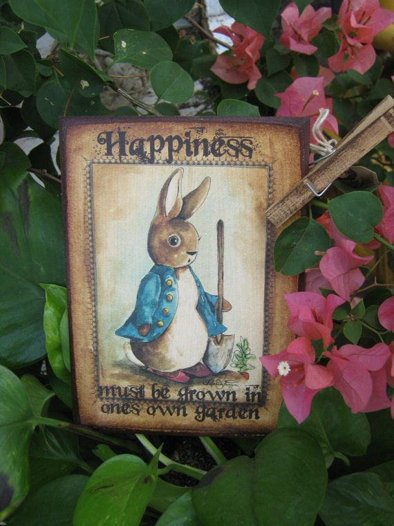 Pin By Sisko Sherman On Beatrix Potter Pinterest Jardins Plante